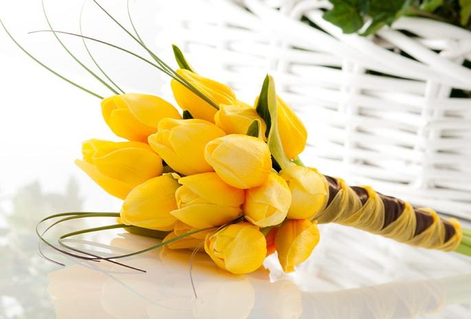http://www.sendflowersandmore.com/image/data/flower-gifting-ideas/Tulip%20flowers.jpg