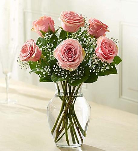 Loves Embrace Roses - Pink