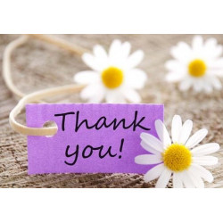 Express Your Appreciation With Thank You Flowers