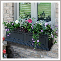 Decor Your Balcony with Colorful Window Box using Flowers & Plants