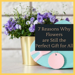 7 Reasons Why Flowers are Still the Perfect Gift for All