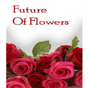 Future Of Flowers