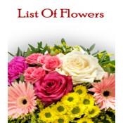 List Of Flowers