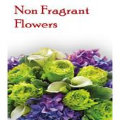 Non Fragrant Flowers