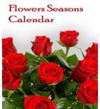 Flowers Seasons Calendar