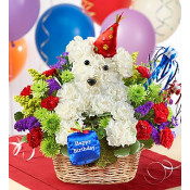 Best Sellers Flower Gifts
