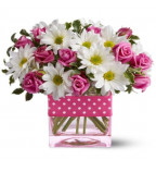 Sorry Flower Gifts