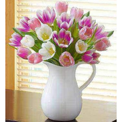 Pitcher Full of Tulips  ( Deluxe )