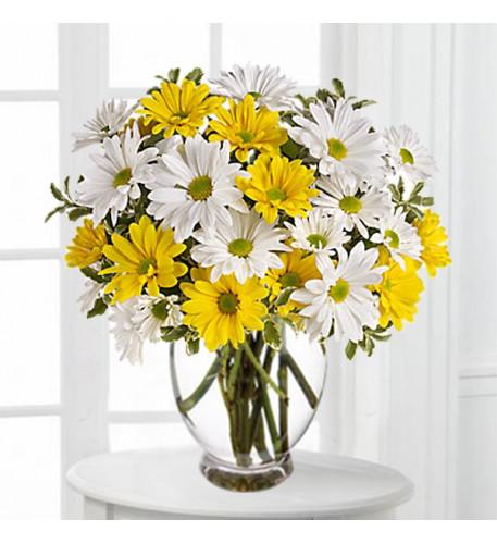 Daisy Day Bouquet (Standard)