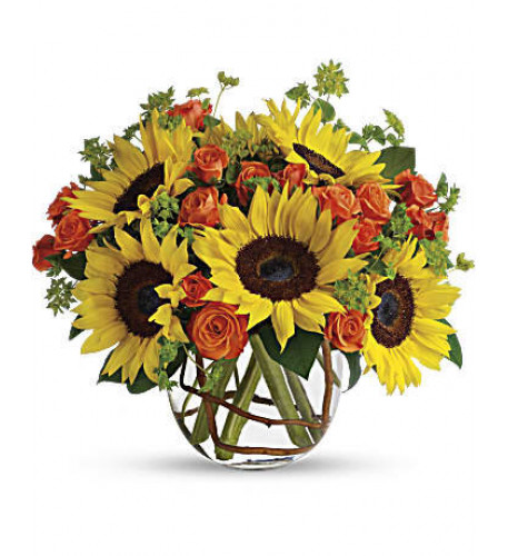Sunny Sunflowers (Standard)
