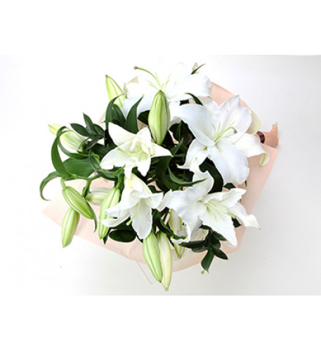Lilly Peridot White