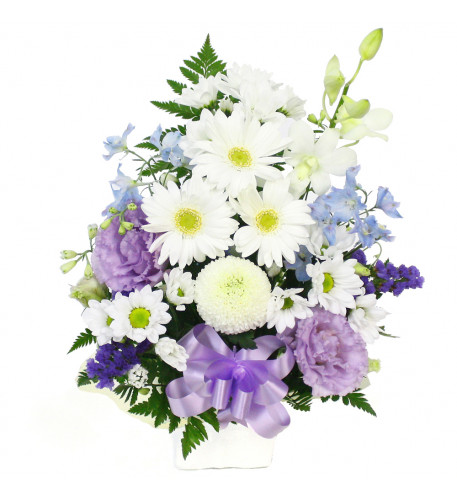 Offerings arrange (you leave Standard)white & purple
