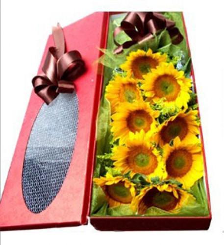 Sunflower Box to Korea