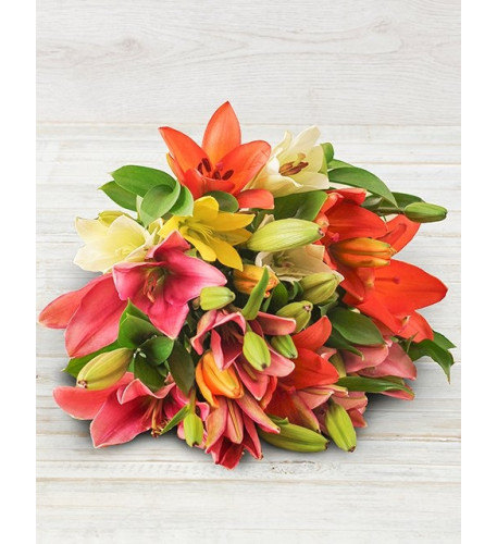 Assorted Lily Mix (Extra Large)