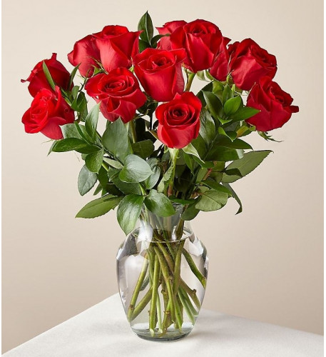 12 Red Roses (12 Red Roses  No Vase)