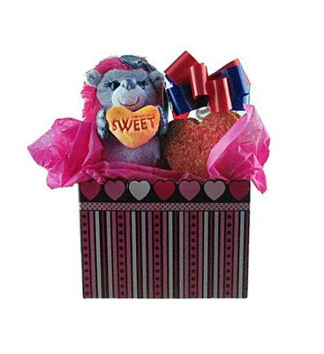 Hedgehog with Heart Shaped Cookies Tote Gift Set