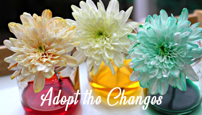 Adopt the Changes