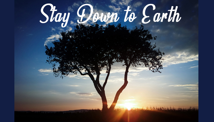 Stay Down to Earth