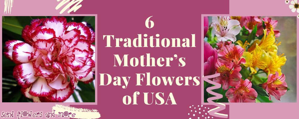 6 Traditional Mother's Day Flowers of USA