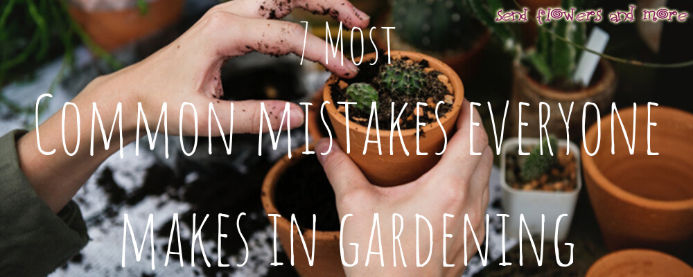 7 Most Common Mistakes Everyone Makes in Gardening