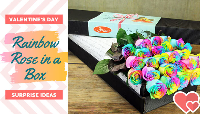 Rainbow Rose in a Box