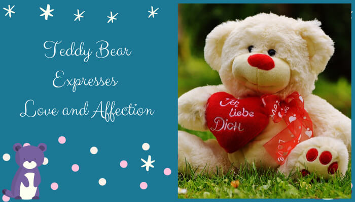 Teddy Bear Expresses Love and Affection