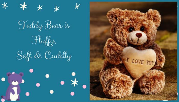 Teddy Bear is Fluffy, Soft & Cuddly too