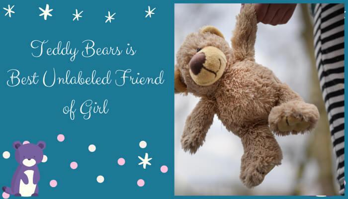 Teddy Bear is Best Unlabeled Friend of Girl
