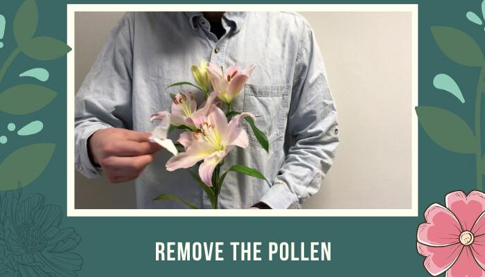 Remove the Pollen