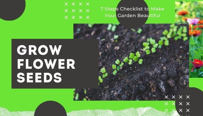 Grow Flower Seeds or Add Flowering Plants