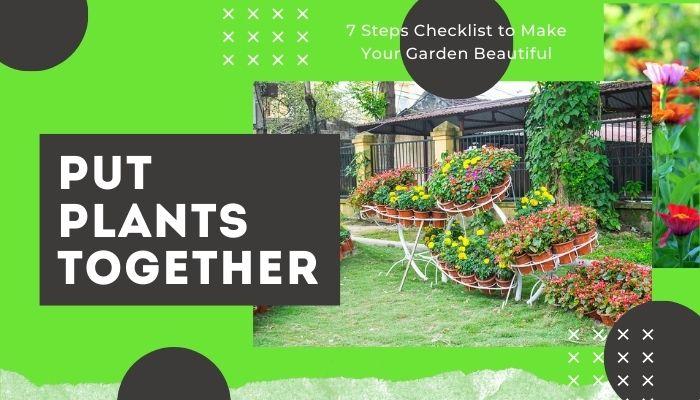 Put Plants Together to Make a Theme