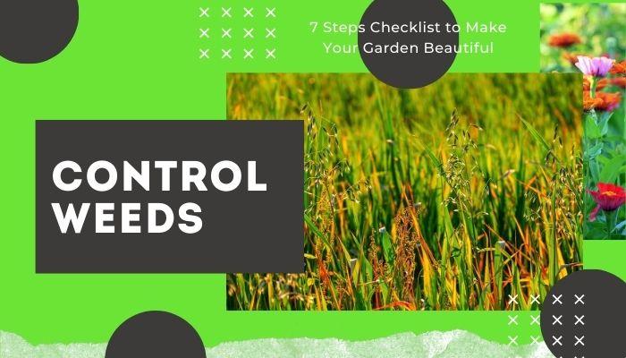Control Weeds