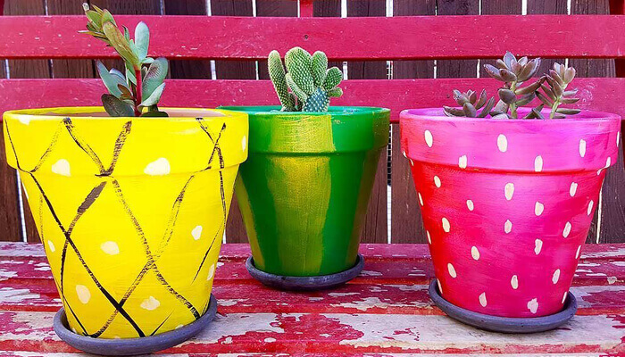 Painted Terracotta Pots or Potted Succulents
