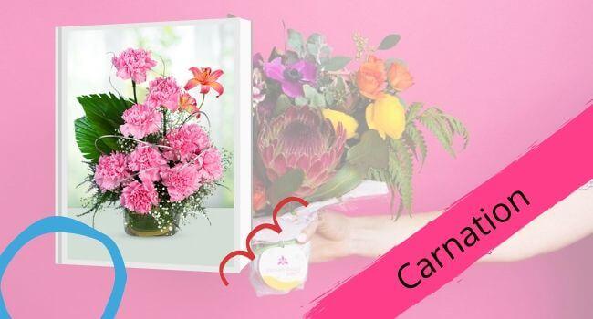 Carnation for Mom