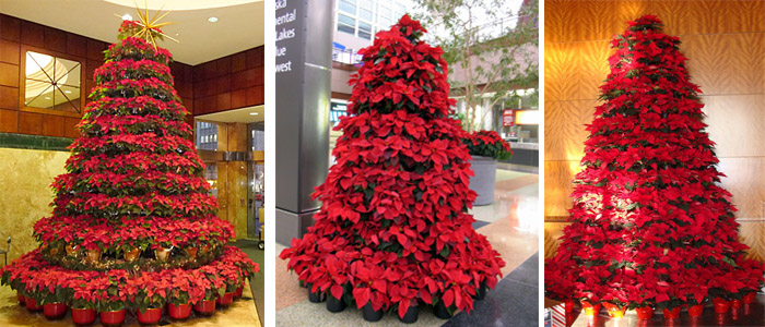 Poinsettia Flowers Tower
