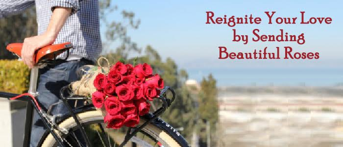 Reignite Your Love by Sending Beautiful Roses
