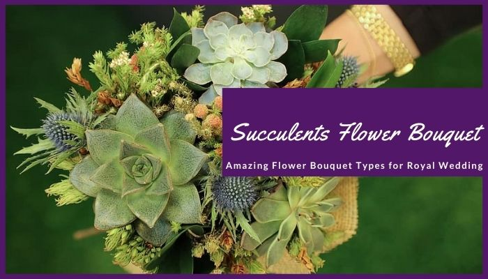 Natural Texture and Succulents