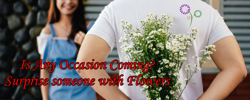Is Any Occasion Coming? Surprise someone with Flowers