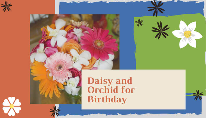 Daisy and Orchid for Birthday