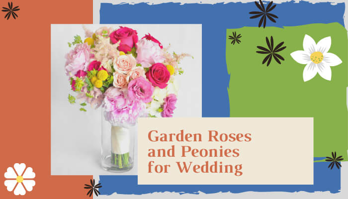 Garden Roses and Peonies for Wedding