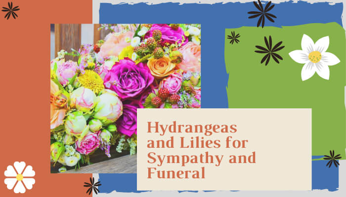 Hydrangeas and Lilies for Sympathy and Funeral