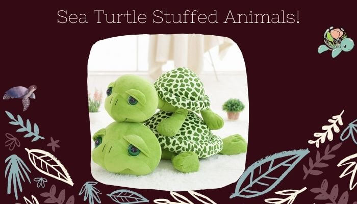 Sea Turtle Stuffed Animals