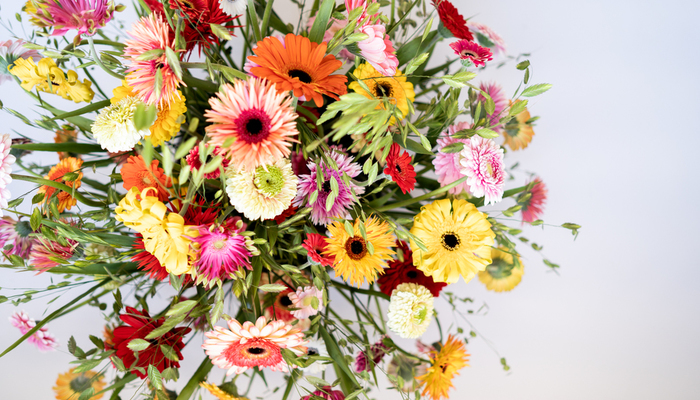 Elliptical Flower Arrangement