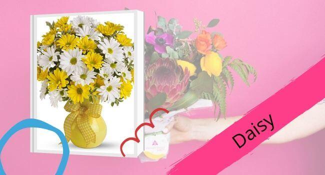 Daisy for Mom