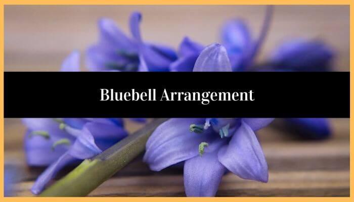Bluebell Arrangement