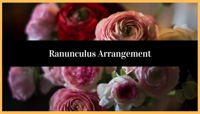 Ranunculus Arrangements