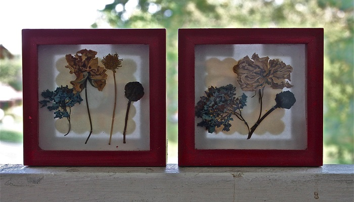 Dried Flower Shadow Boxes
