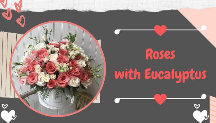 Roses with Eucalyptus