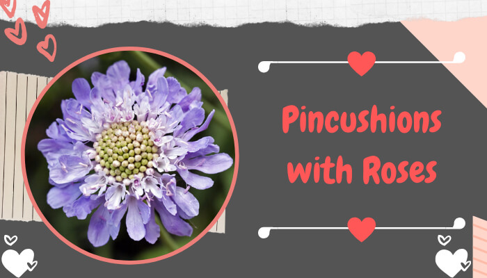 Pincushions with Roses