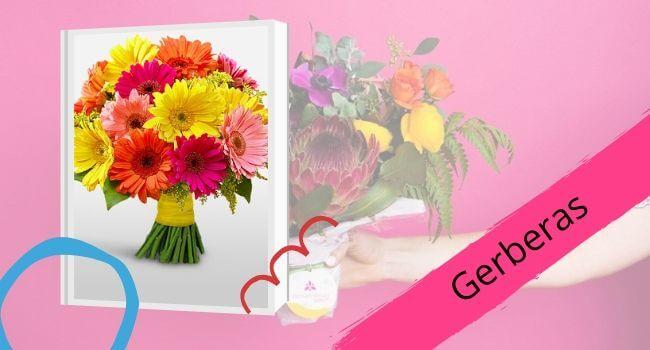 Gerberas for Mom